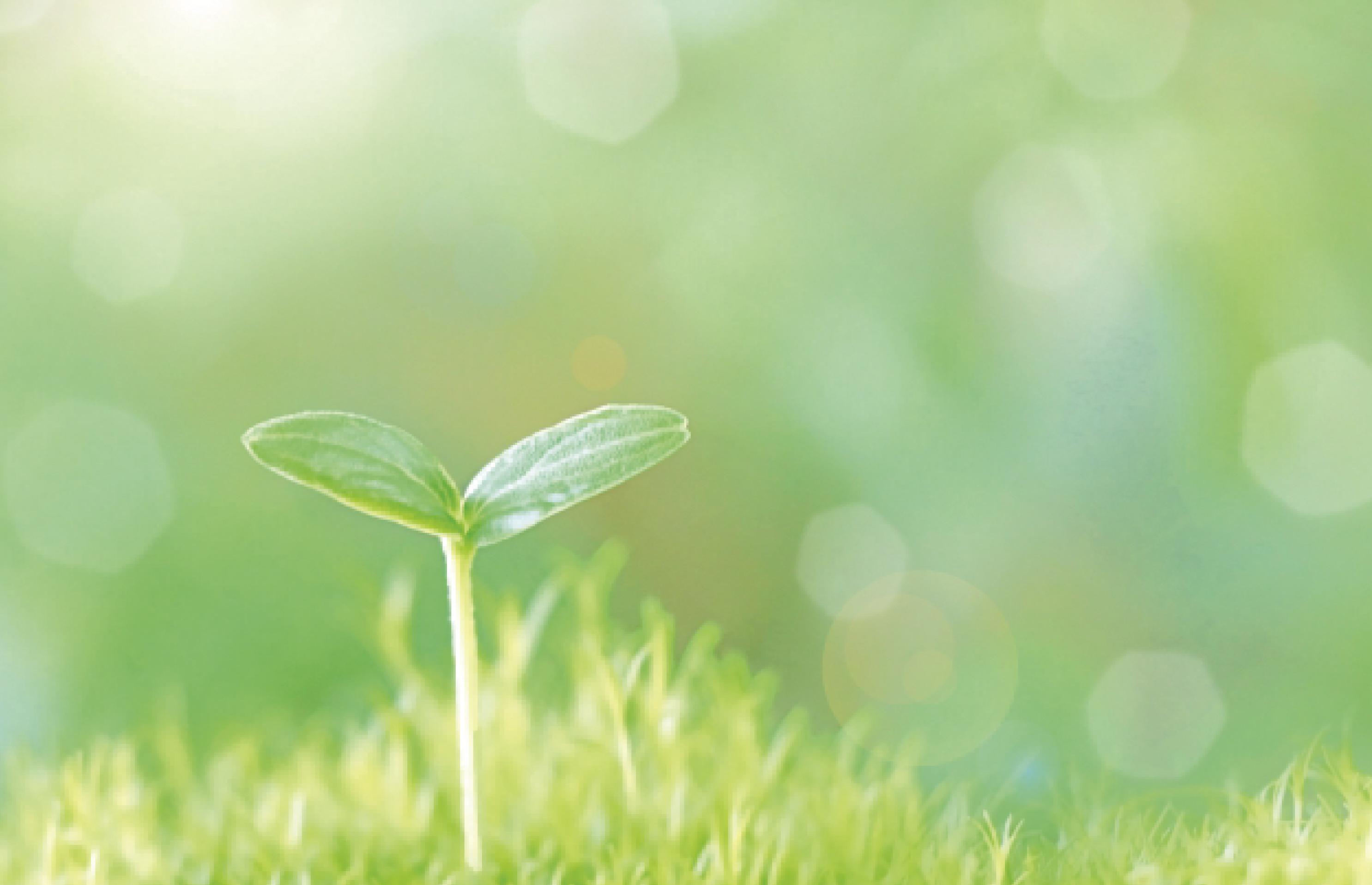 環境方針のイメージ